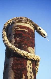 rope_snake
