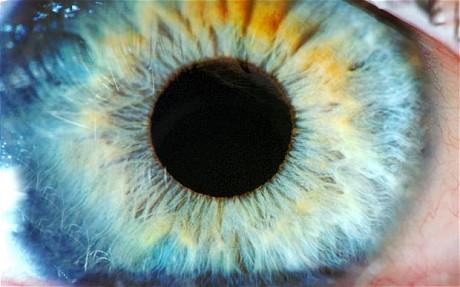 eye_1833544c